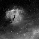 Head of the Seagull Nebula,                                Sebastiano Recupero