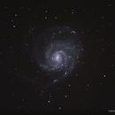 M 101 - The Pinwheel Galaxy ,                                Giorgio Ferrari
