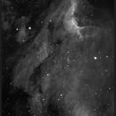 The Pelican Nebula in H alfa,                                Dominique Callant