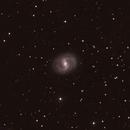 M-91, Barred Spiral Galaxy in Coma Berenices,                                Stargazer66207
