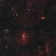 "NGC7635 ""Bubble Nebula"" and Neighbors - 9/3/2019,                                Adam Drake"