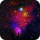 NGC 2264, The Cone,                                Rob Fink