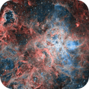 NGC 2070 The Tarentula Nebula,                                Jonathan FERTIL
