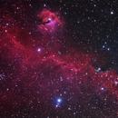 Sh2-292 Seagull Nebula RGB Only,                                Deep Sky West (Lloyd)