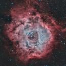 The Rosette Nebula in HOO,                                Tommy Lease