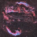 The Veil Nebula Complex,                                Gorilla_astro