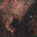 NGC7000,                                Jammie Thouin