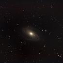 NGC3031,                                Daniele Viarani