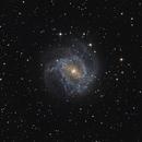 M83 VC200L,                                Richard Muhlack