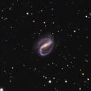 NGC 7479,                                Luigi Ghilardi