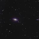 M 104 SOMBRERO GALAXY,                                Daniele Cammarata