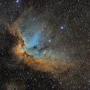 NGC 7380 Wizard Nebula,                                Frank Iwaszkiewicz