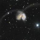 Antennae Galaxies,                                Robert Schumann