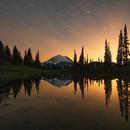 Enchanting Reflections,                                Jeremy Jonkman