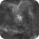 IC1805 Heart Nebula (Ha Data),                                Michael Caller