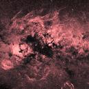 Wide field (29°x19°) image of Swan (Cyg) constellation in H alpha spectrum line (RGB),                                Vladimir Machek