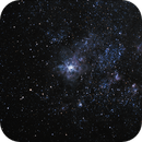 NGC2070 - Tarantula Nebula in LMC,                                Marcelo Alves