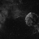 Nébuleuse de la Méduse - Jellyfish Nebula - IC443 & IC444,                                Didier Walliang