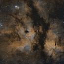 Deep in the Gamma Cygni Nebula,                                Brian Sweeney