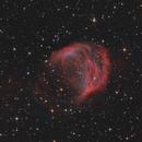 APN 21 Medusa Nebula,                                Morris Yoder
