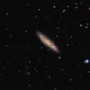 M97 & M108,                                Taddeuccis