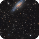 Galaxy Panorama - NGC 7331 and Deer Lick Group to Stephen's Quintet,                                Paddy Gilliland