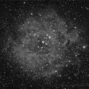 TestLight QHY9 Rosette Nebula,                                HekelsSkywatch