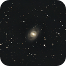 M95,                                Clemens