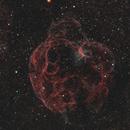 Simeis 147 - Spaghetti Nebula - Sharpless 2-240,                                Dale Hollenbaugh