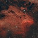 IC 5070 Pelican Nebula,                                Salvatore Cozza