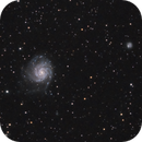 A relatively lonely M101,                                Lee B