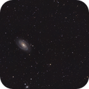 M81 / M82 and friends,                                Martin Palenik