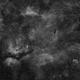 Cygnus nebula complex - H-Alpha,                                Alessandro Carrozzi