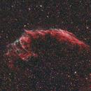 NGC 6995 at full moon,                                Mathias Radl