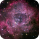 Rosette Nebula,                                Bernadov