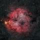 IC1396 Elephant Trunk Nebula Reprocessed,                                Jeff Tomasi