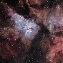 NGC 3372 Eta Carine 07-02-2021(reprocessamento),                                Wagner