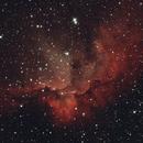 NGC7380 - Wizard Nebula,                                GPBrown