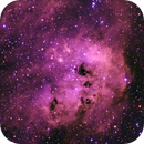 IC410 in Auriga (aka the Tadpoles Nebula) with open star  cluster  NGC1893,                                Mike_Stutters