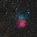 Messier 20 - Trifid Nebula,                                Dhaval Brahmbhatt