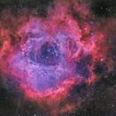 Rosette Nebula HaRGB,  QHY163M,                                David Dvali