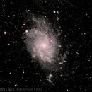 The Triangulum Galaxy - Messier 33,                                Paul Hutchinson