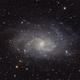 M33, galassia a spirale nel Triangolo,                                Giuseppe Nicosia