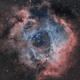 Rosette Nebula HOO,                                Trevor Gunderson