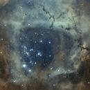 NGC2237-2244 Ha-OIII,                                Fabio Semeraro