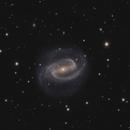 NGC 1300,                                Peter Goodhew