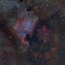 North American Nebula (NGC 7000),                                DSA101