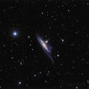 NGC 1532 & NGC 1531,                                Peter Rejto