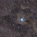 Iris Nebula (NGC 7023),                                Mario Spenard