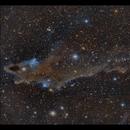 The Shark Nebula LDN1235,                                Göran Nilsson